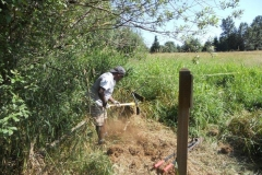 July-20-Fencing-Work-Party-003