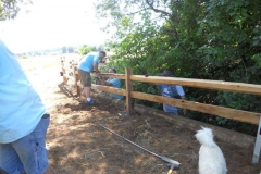July-20-Fencing-Work-Party-006