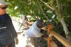 July-20-Fencing-Work-Party-024