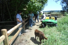 July-20-Fencing-Work-Party-029