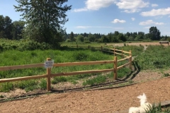 2019-May-11-fence-pic