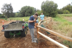 Fence-Replacement-Work-Party-015