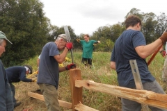 Fence-Replacement-Work-Party-032